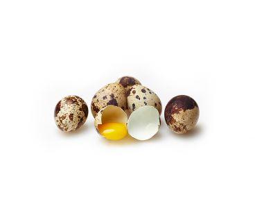 Яйцо перепелиное Яйцо перепелиное (цена за 20 шт)