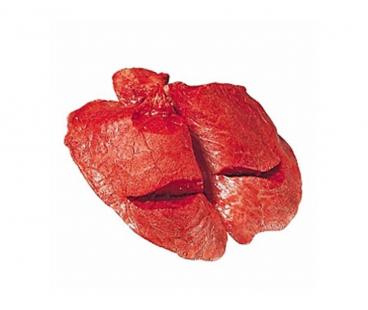 Мясо свежее Легкое говяжье